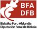 logo_diputacion_bizkaia